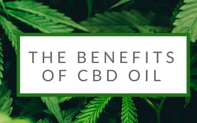 Suffering From Pain? 11 Benefits Of CBD Oil You Never Knew
