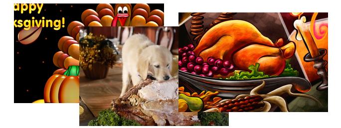 thanksgiving desktop fun wallpaper collection 2011 pureinfotech
