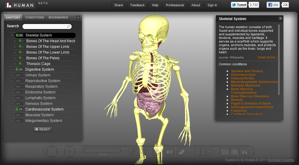 BioDigital Human: Re-discover the human body in 3D [Chrome Extension ...