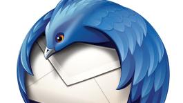 Thunderbird logo big