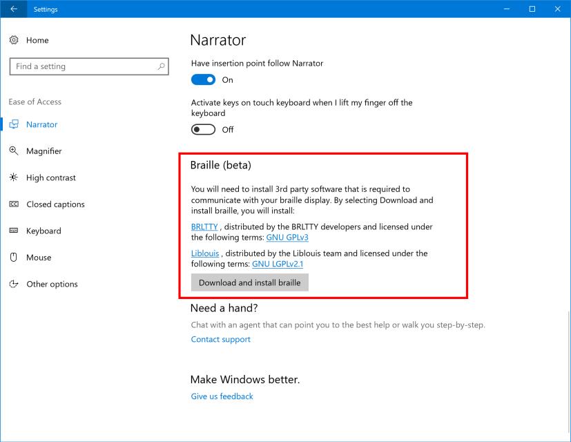 Braille support on Windows 10