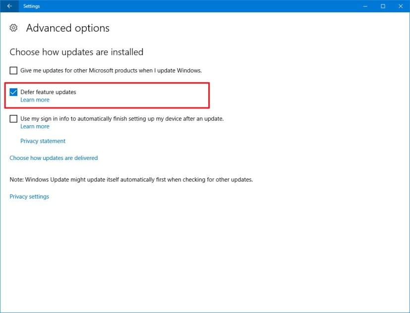 Windows Update, Defer feature updates option