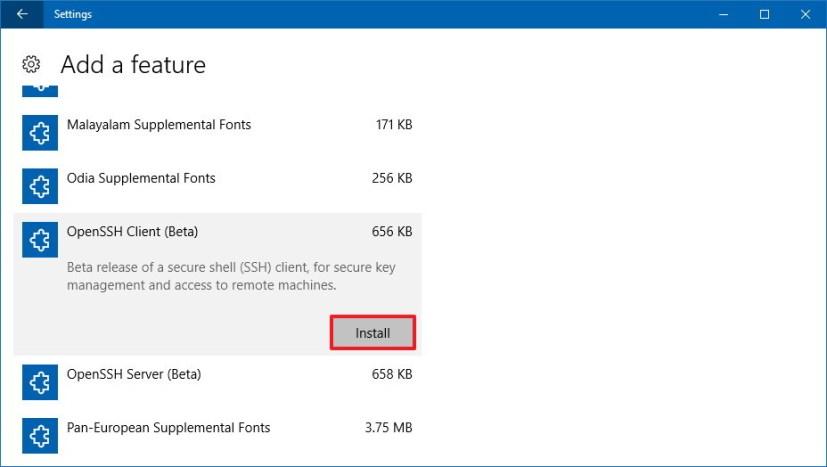 Install OpenSSH on Windows 10