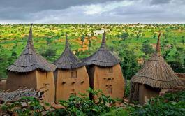 Bing in Africa theme