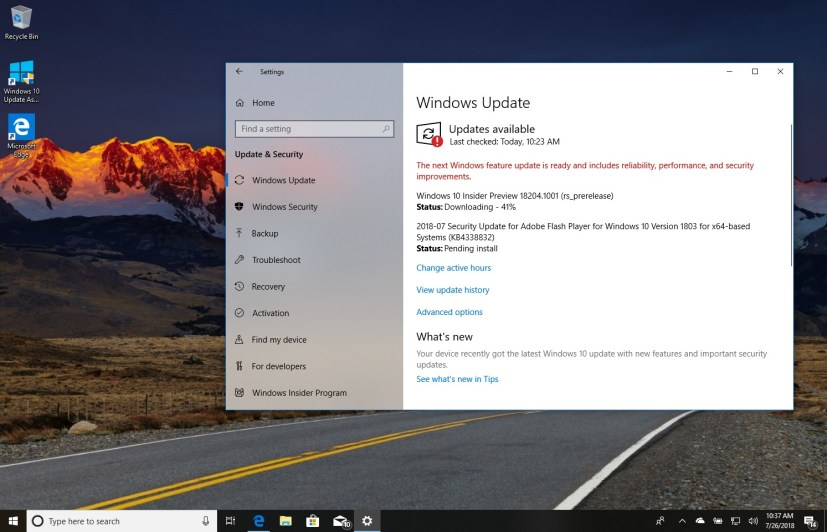 Windows 10 build 18204