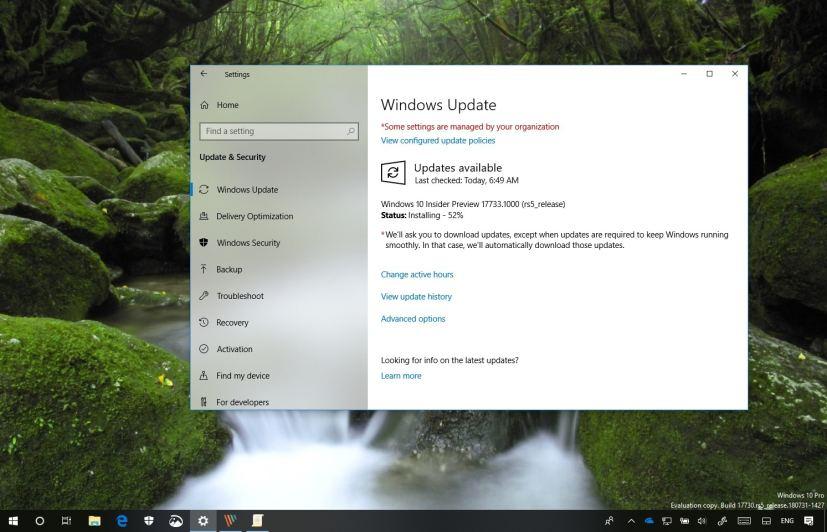 Windows 10 build 17733