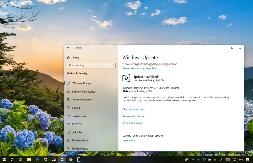 Windows 10 build 17730