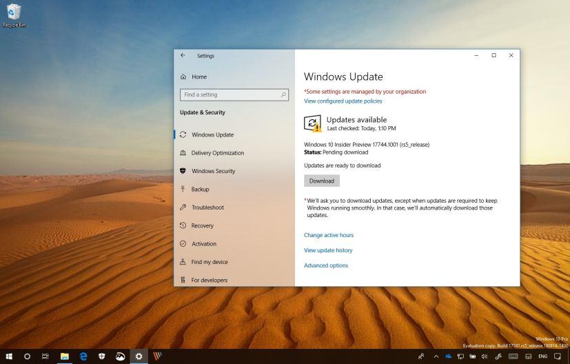 Windows 10 build 17744