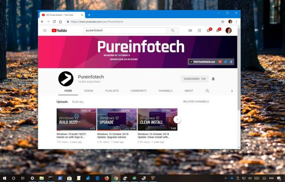 How to fix green screen videos on Chrome • Pureinfotech