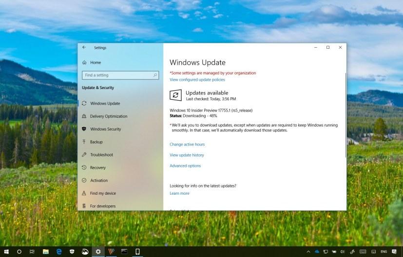 Windows 10 build 17755