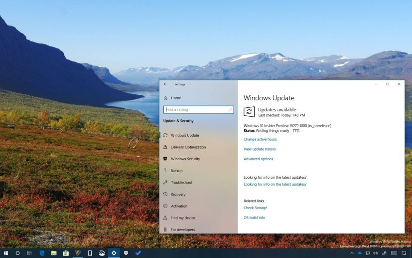 Windows 10 build 18272