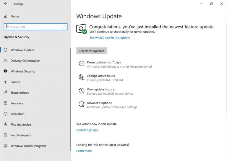 Windows 10 update settings on build 18282