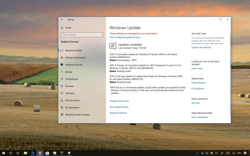 KB4469342 update, Windows 10 17763.168