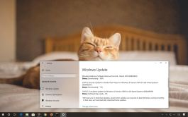 Update KB4489899 for Windows 10