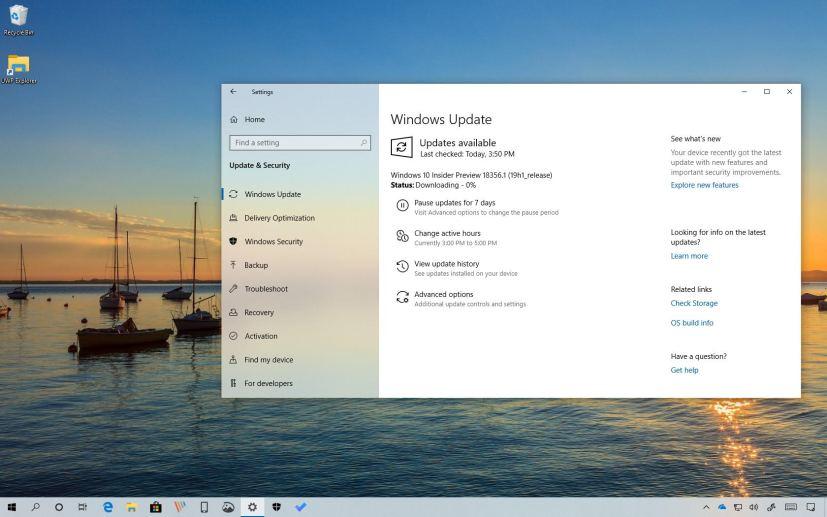 Windows 10 build 18356
