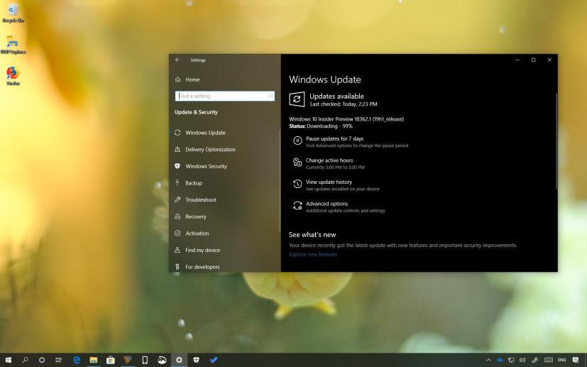 Windows 10 build 18362