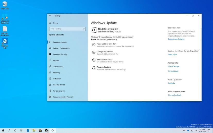 Windows 10 build 18855