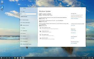Windows 10 build 18362.10005