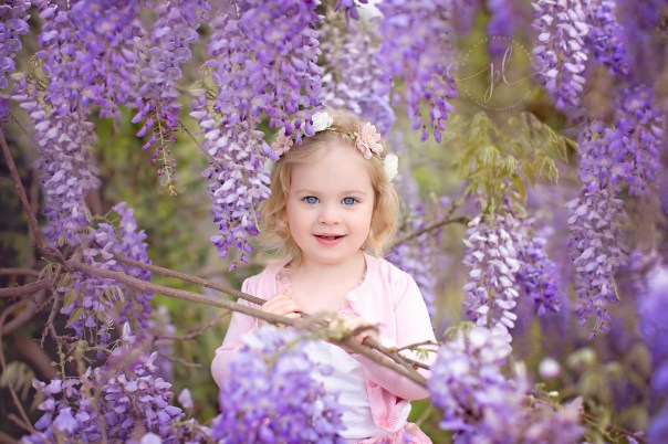 Adelyn Wisteria Watermarked