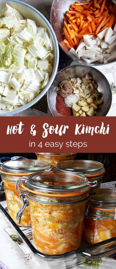 Hot and Sour Kimchi in 4 easy steps by Purely Pacha