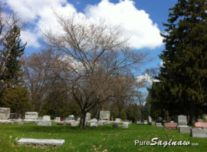 oakwood cemetery saginaw michigan