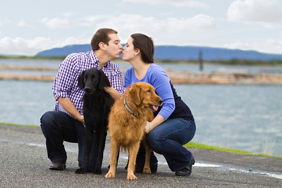 Christmas Photos of a couple and their dogs at the Everett waterfront near the marina and Scuttlebutt Brewery by Christi Hardy of PureShots Photography