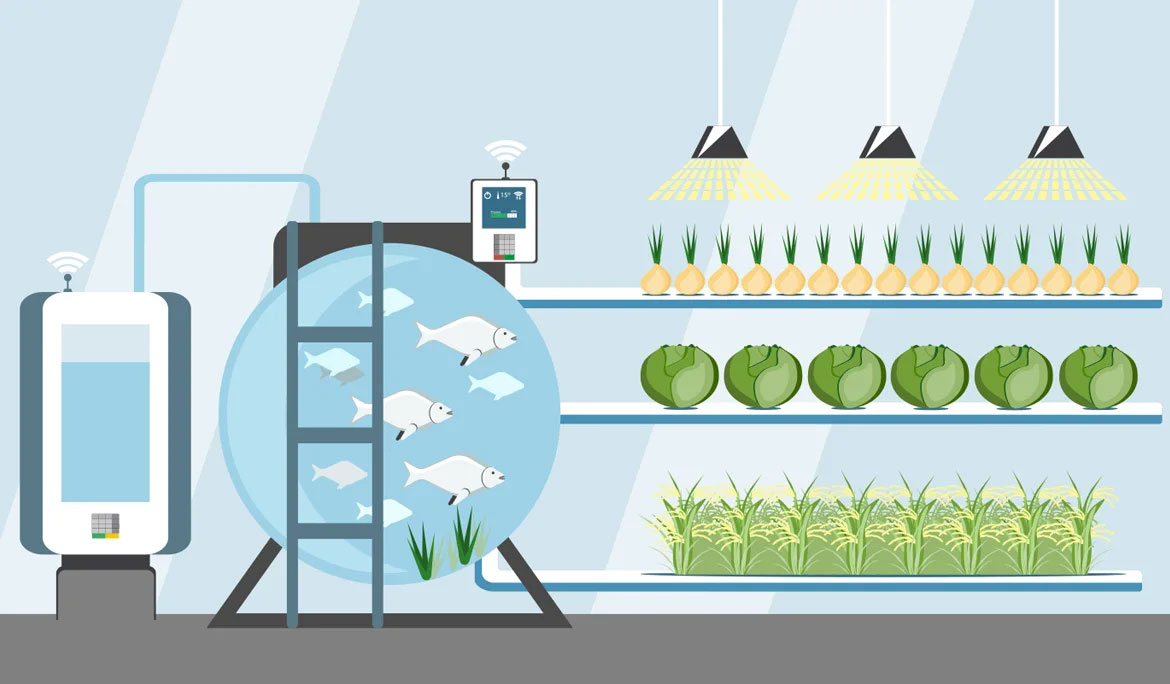 NB-IoT BASED AQUAPONICS SOLUTION FOR A SMART CITY