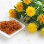 紅花該怎麼攝取?紅花籽油、紅花茶,紅花的各種使用方法!