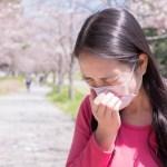 花粉症是什麼?3大原因&導致花粉症的植物種類,不只日本台灣也需要小心!