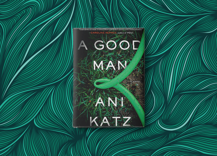 best books of 2020 a good man ani katz