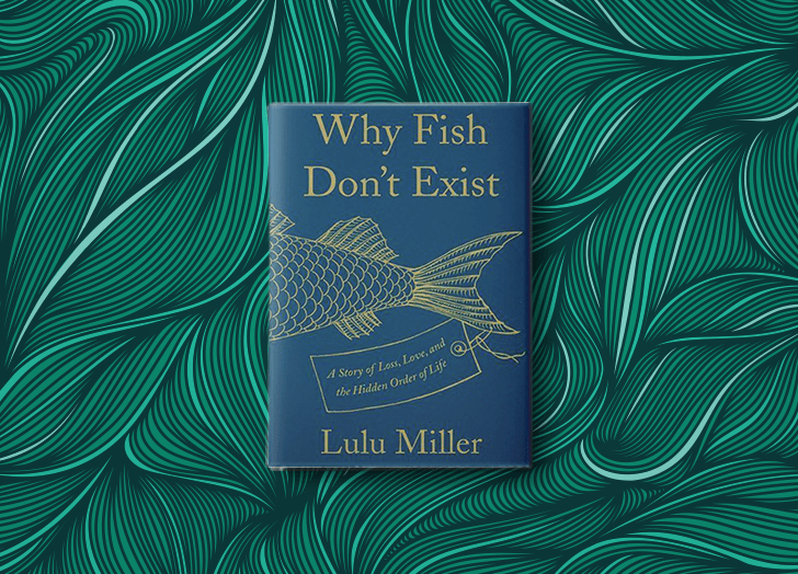 best books of 2020 why fish dont exist lulu miller