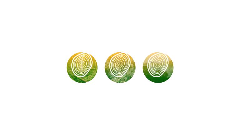 pro verdura 07
