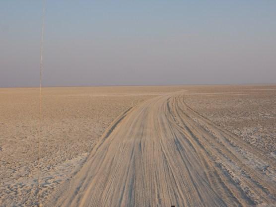 Fahrt in die Makgadikgadi Pans