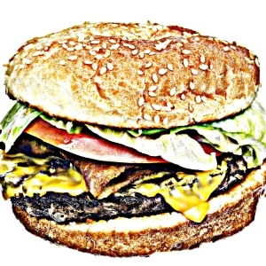Fast Food and the Environment - Discussion Questions