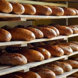 Create Your Own Bakery (Free Lesson Plan)