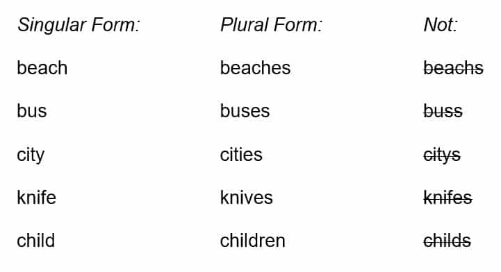 lesson 5 1 singular and plural nouns purland training