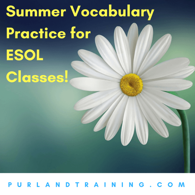 Summer Vocabulary Practice for ESOL Classes!