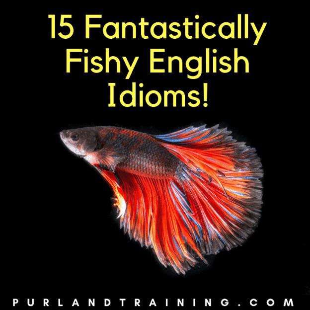 15 Fantastically Fishy English Idioms!