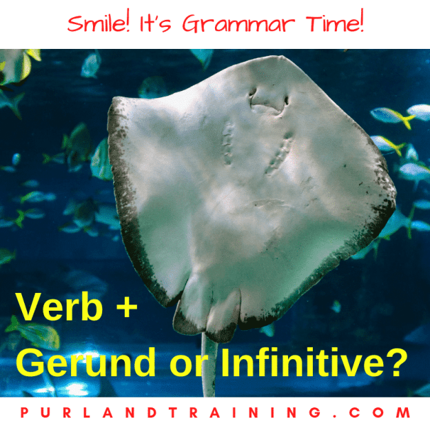 Grammar Facts! Verb + Gerund or Infinitive?