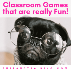 Classroom Games that are really Fun!
