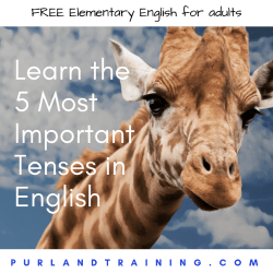 5 Tenses in English and 5 Forms of the Verb