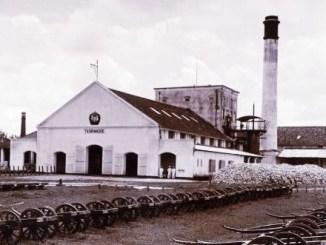 Pabrik Gula Tasikmadu tahun 1920