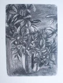 Charcoal still life drawing of vase of flowers/plants
