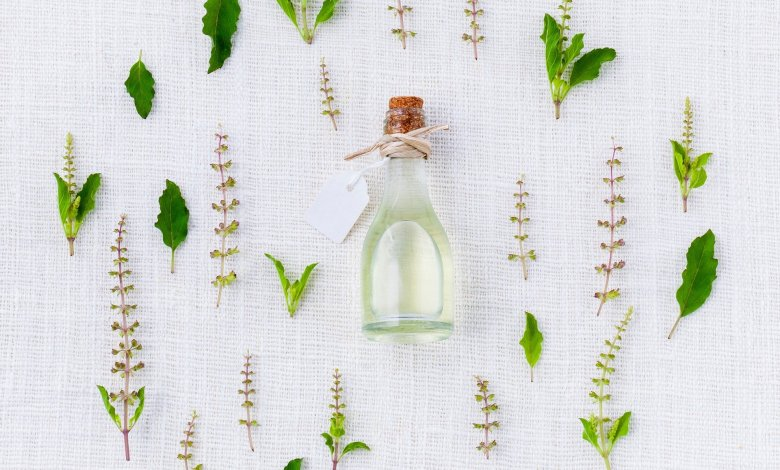 Photo of Best Herbs For Your Garden and How to Care for Them