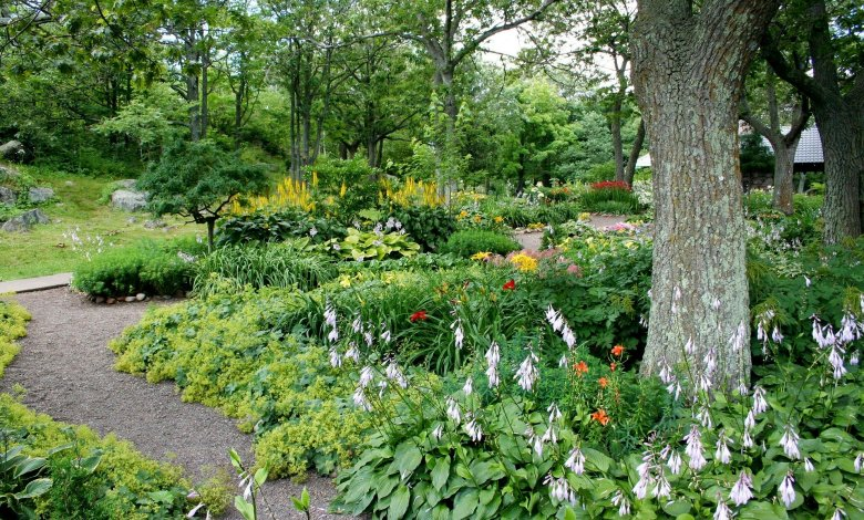 Photo of How to Create the Perfect Landscape Design