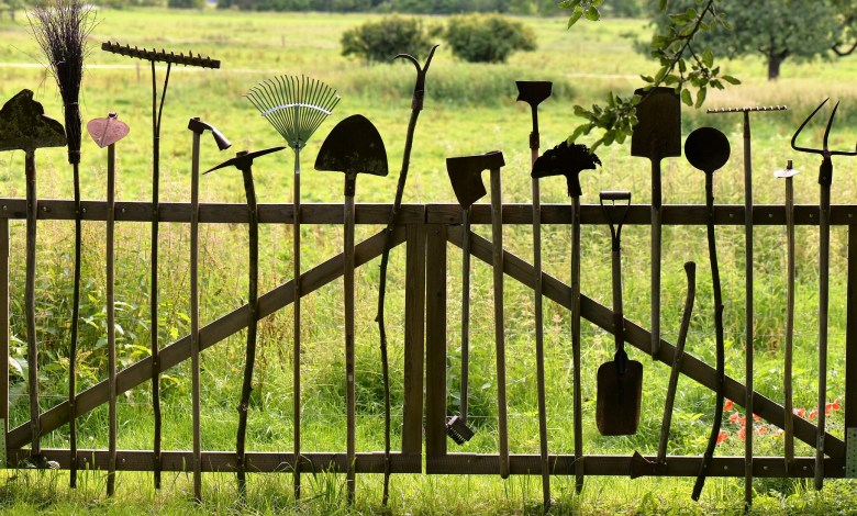 Photo of Essential Gardening Tools That Every Gardener Needs
