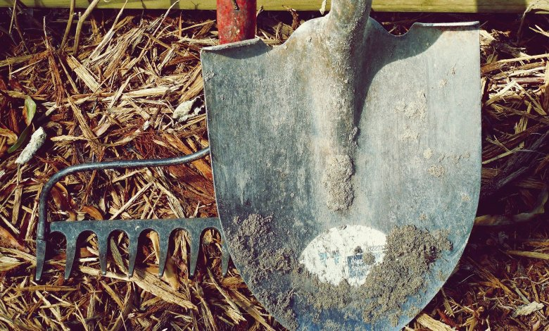 Photo of What are the Best Gardening Tools?
