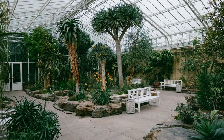 Photo of What Is a Botanical Garden?