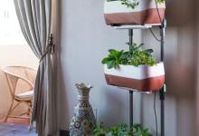 Photo of How to Build an Indoor Vertical Vegetable Garden
