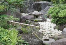 Photo of How to Make a Rock Garden